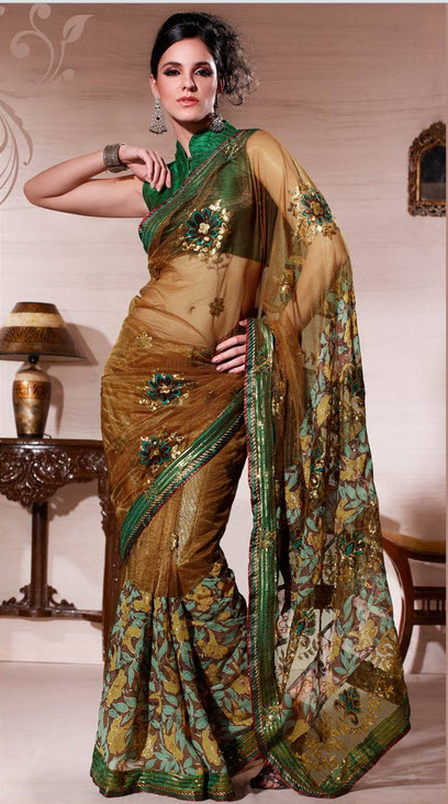 brown-color-saree-collection-2012-2013