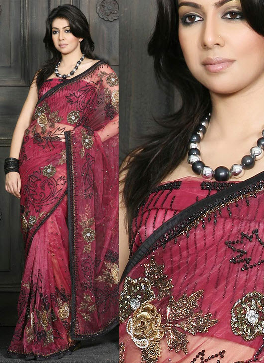 most-beautiful-saree-dress-picture-2012-2013
