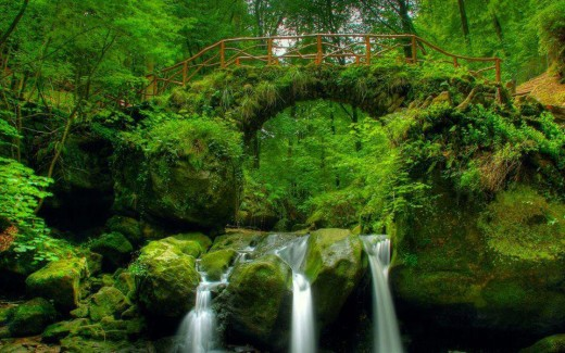 Nature latest most beautiful hd widescreen natural scene wallpaper